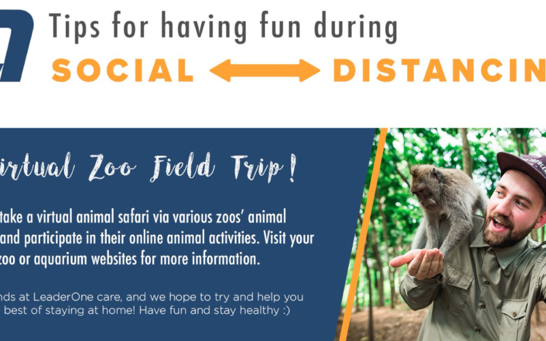 Social Distancing Fun – Go on a Virtual Zoo Trip!